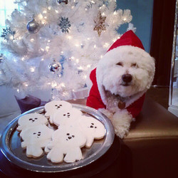 Ralphie cookies