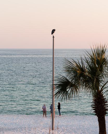Kamide_17_Florida-1638.jpg