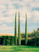 Kamide_Barcelona-7860.jpg