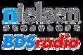 Nielsen BDS Radio Logo (Transparent).png