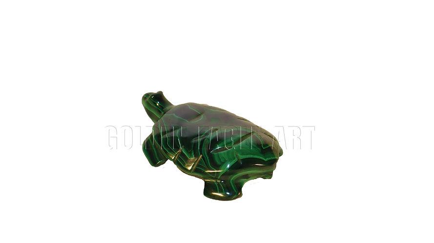 Malachite stone frog