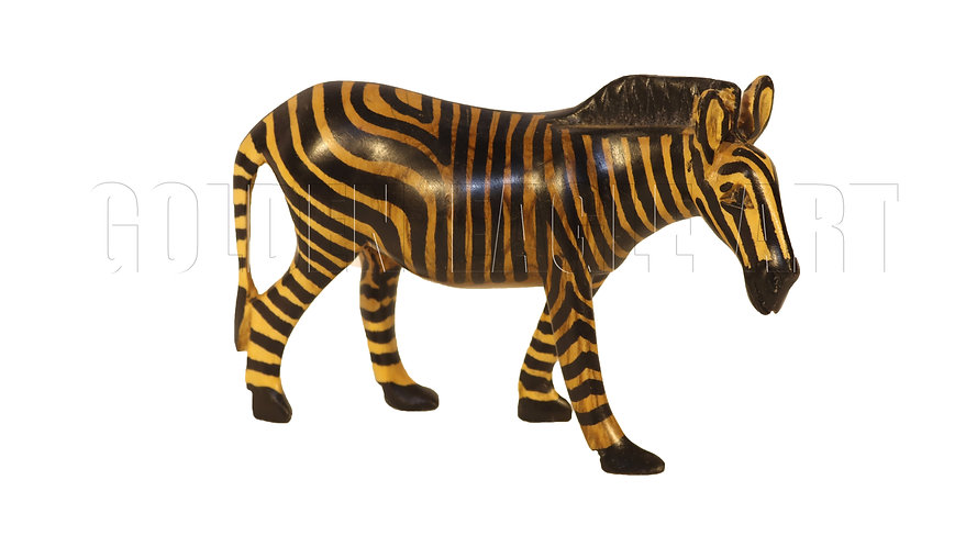 Olive colored zebra