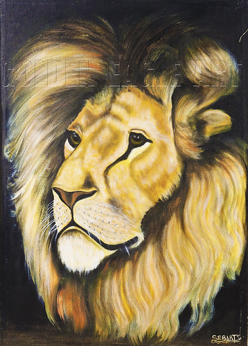 Lion face oil painting on canvas