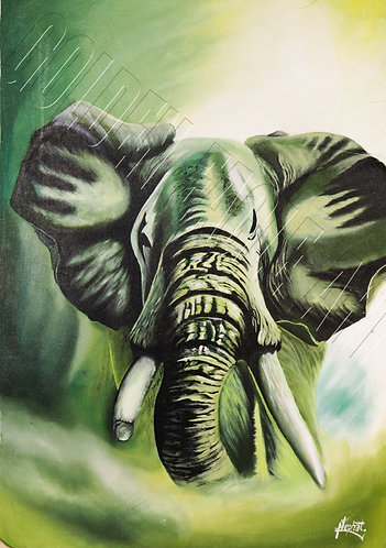 Elephant face oil painting on canvas
