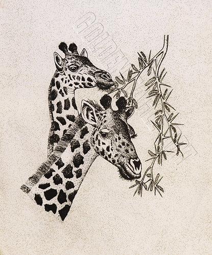 Black and white lovely giraffe heads silk batik