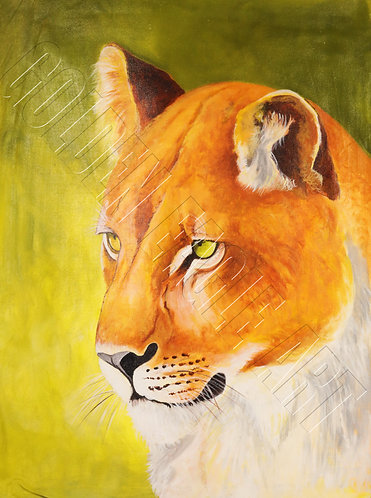 Lioness head oil painting on canvas