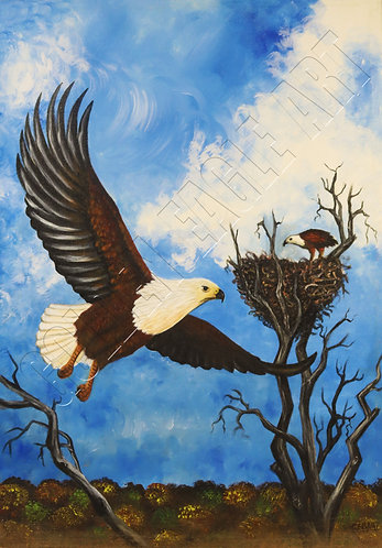 Eagle oil painting on canvas