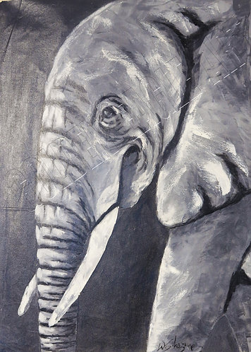 Black and white elephant head painting on canvas