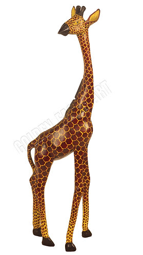 African colored giraffe