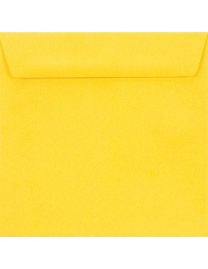 K4+ - Yellow (geltonos sp.)