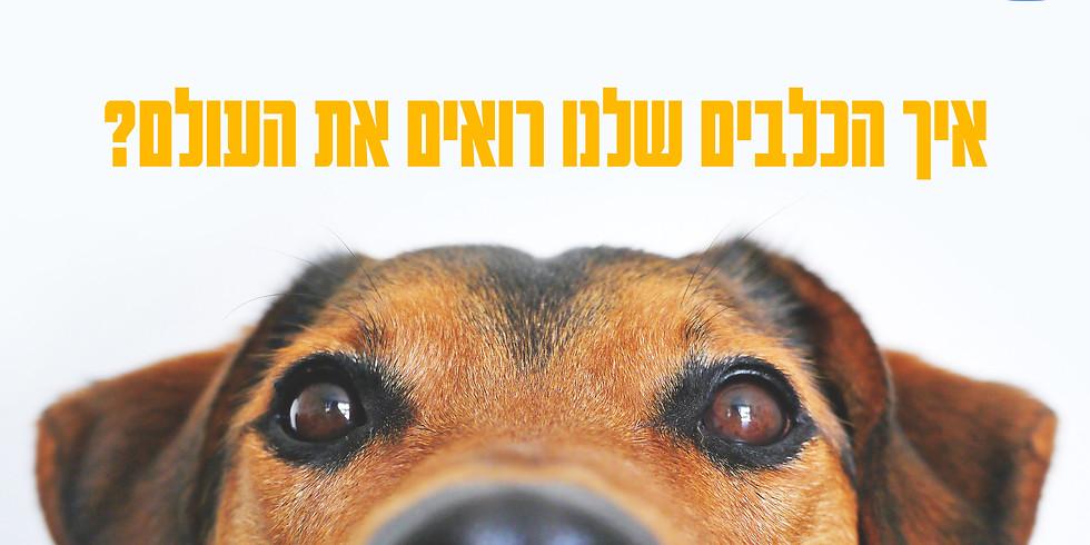 הרצאה דיגיטלית בזום : איך הכלבים שלנו רואים את העולם?