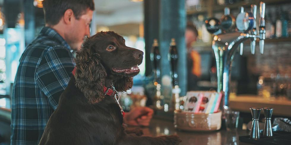 הרצאה דיגיטלית בזום : הכלב האורבני