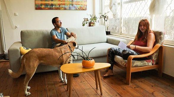 גבר ואישה מדברים על כלבים אשר כלבה חומה ליד הגבר