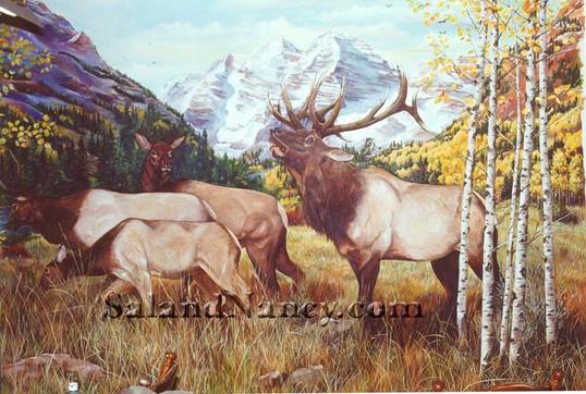 Elk Maroon Bells