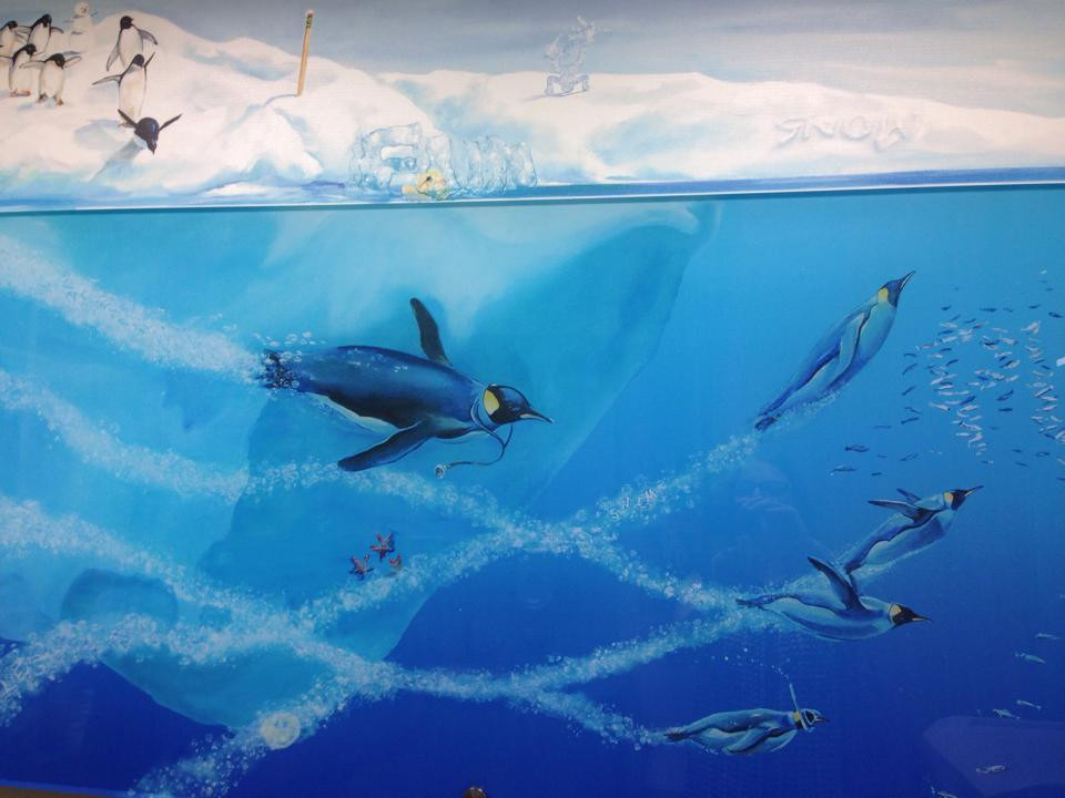 Penguins swimming- i Spy