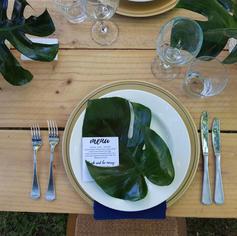Monsterra Plate Setting