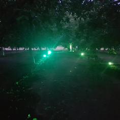 Specialty Lights - coloured flood/spot
