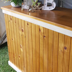 Timber Bar with Ice Bath