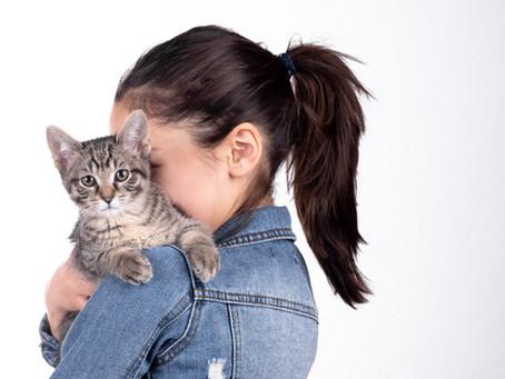 A Portrait Session With Your Pet