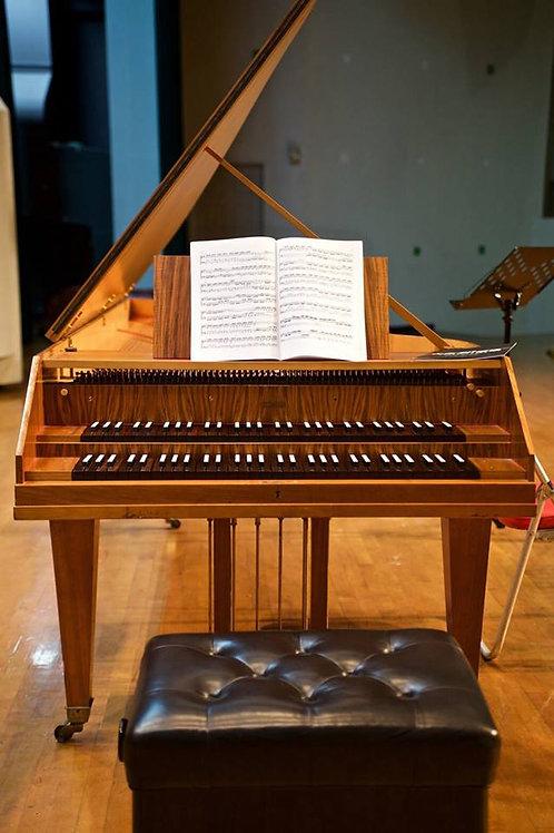 Sassmann雙層鍵盤音樂會大鍵琴