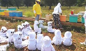 apicoltura-per-bambini-copertina.jpg