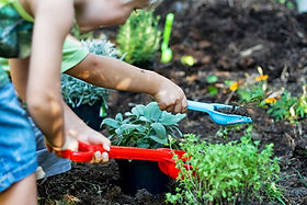 bambini-piante-aromatiche.jpg