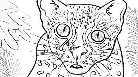 스케치(5).jpg