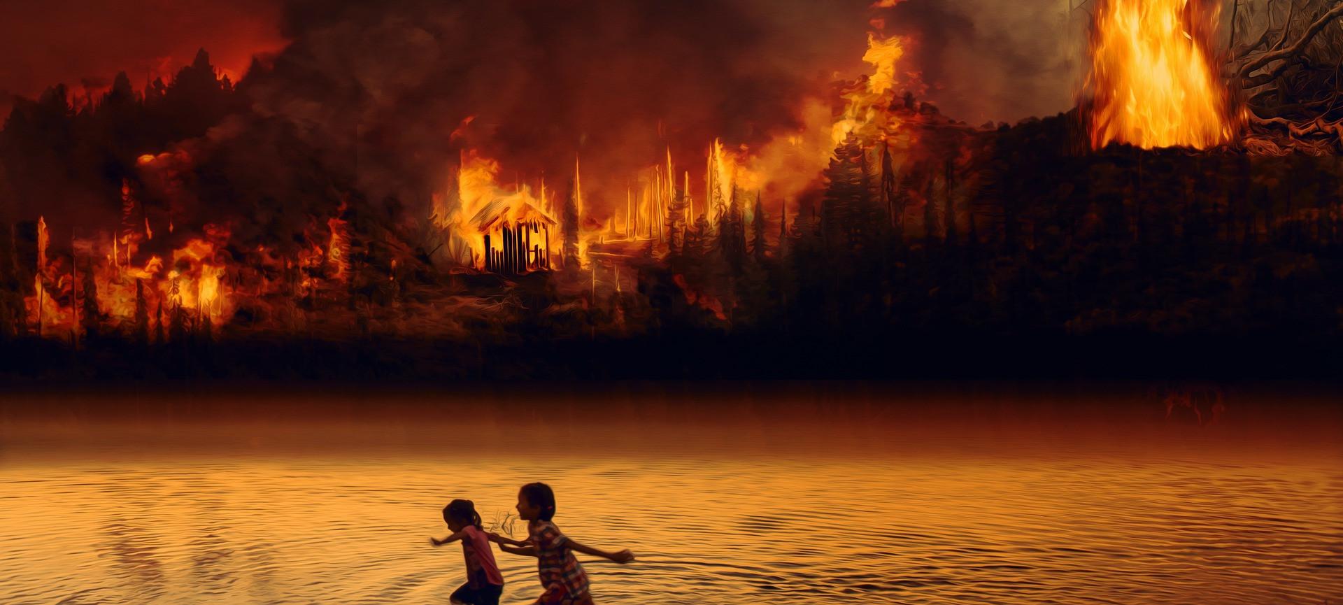 Amazon_fire(1).jpg