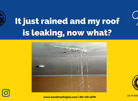 It just rained and my roof is leaking, now what?