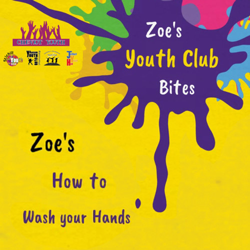 Zoe's how to wash your hands