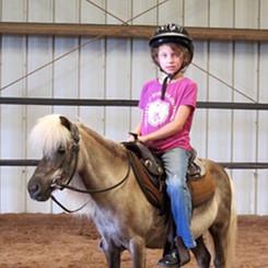FREE Horse and pony rides