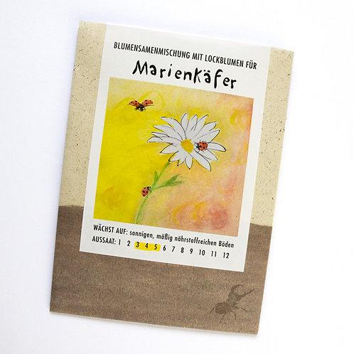 Lockblumen für Marienkäfer