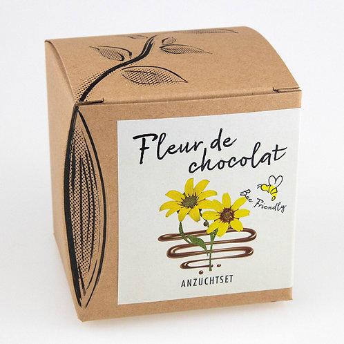 Geschenk-Anzuchtset Schokoladenblume