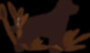 Labradorzucht Bayern