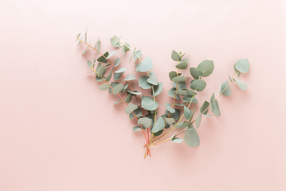 flowers-eucaaliptus-composition.jpg