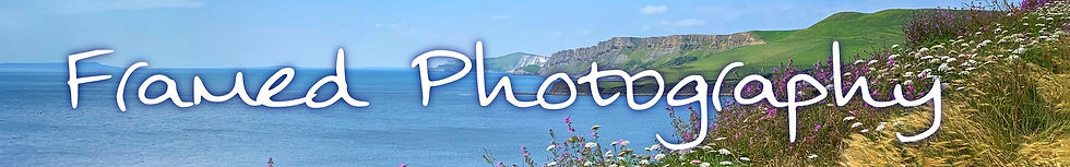 Photography_Banner_A_small.jpg