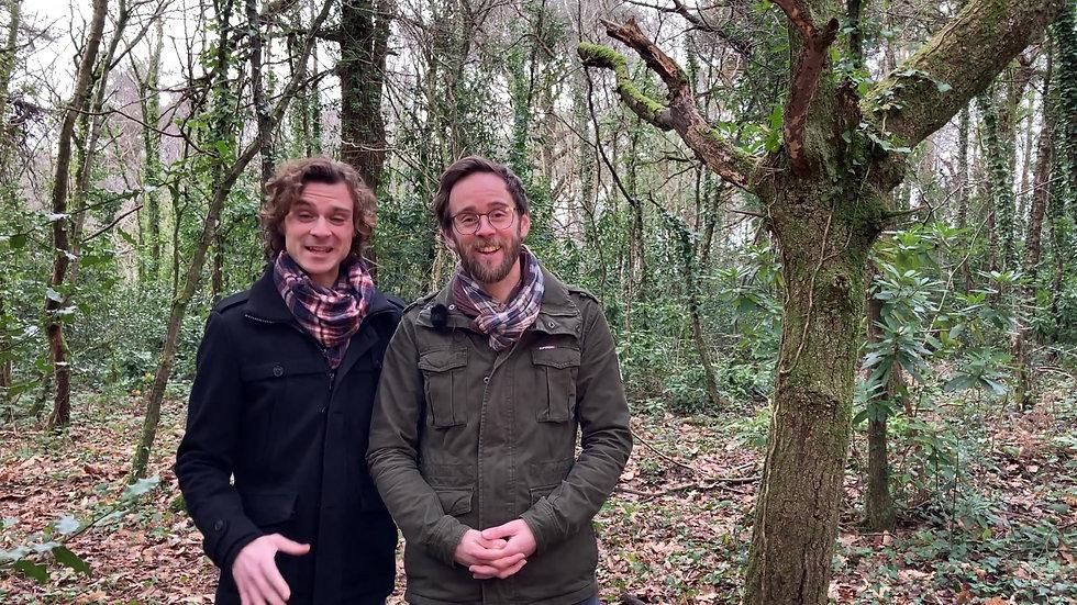 Ninebarrow Woodland Sponsorship Scheme
