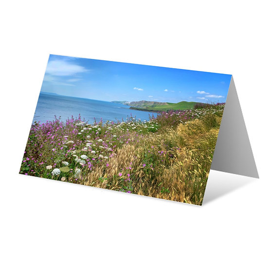 Ninebarrow's Dorset Greetings Cards (Mixed Pack of 10)