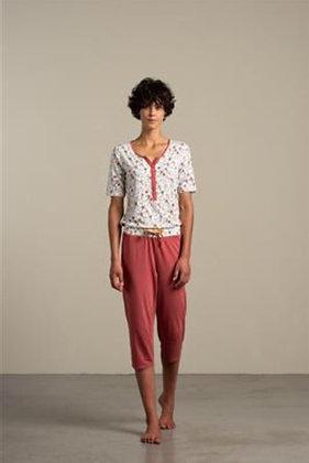 Pyjama Hyacinth Eskimo