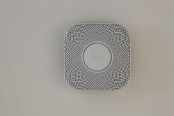 Nest_Detect_3061