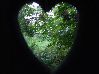 ... nur mit dem Herzen sieht man gut...
