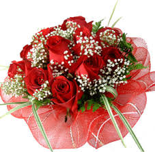 Red Roses 12