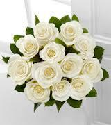 White Roses 12