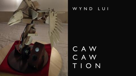 Cawtion