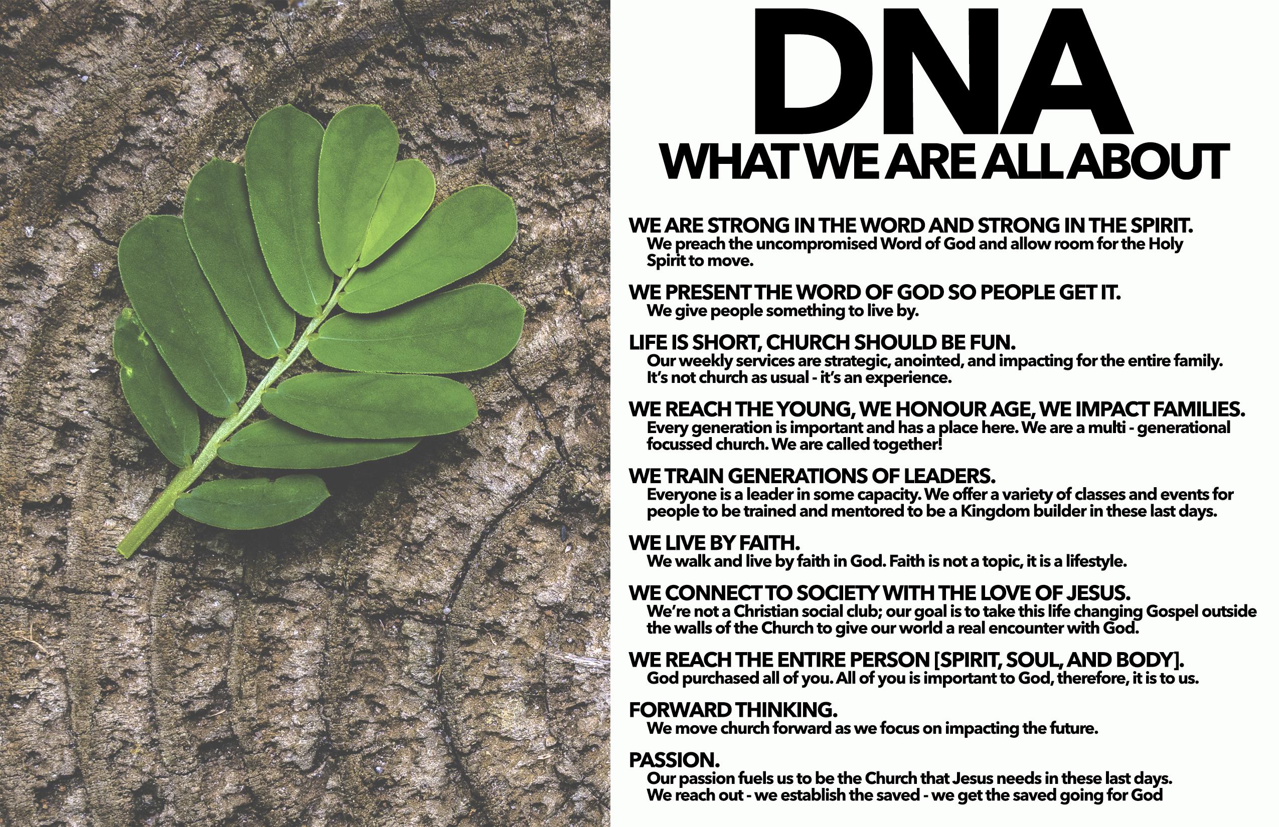 7. DNA