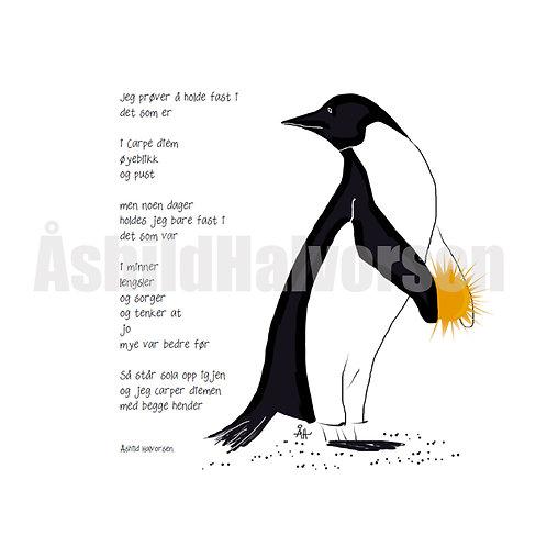 Pingudikt 11