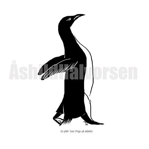 36 Pingu