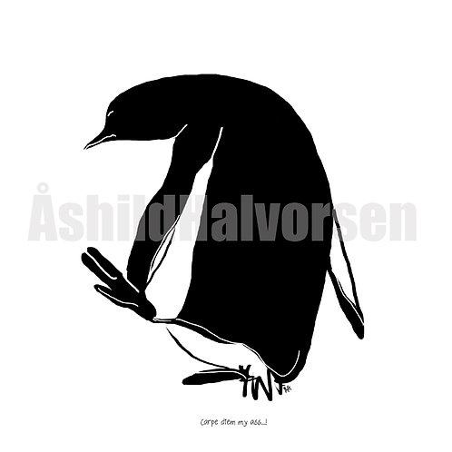21 Pingu