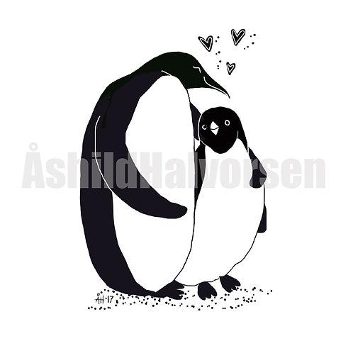 Pingu 54 - A4