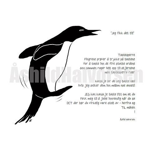 Pingudikt 13